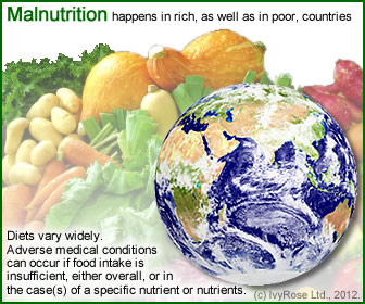 Malnutrition does not only happen in Third World countries but can also occur in rich countries such as the United States, UK, Australia and European countries.