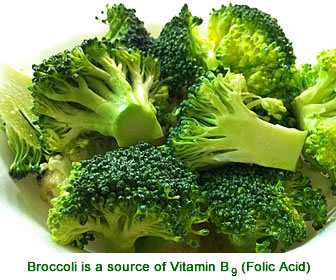 Broccoli is a source of vitamin B9