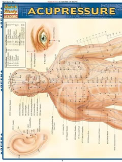 Detailed acupressure chart