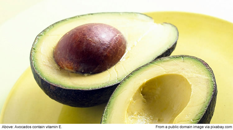 Avocados contain vitamin E