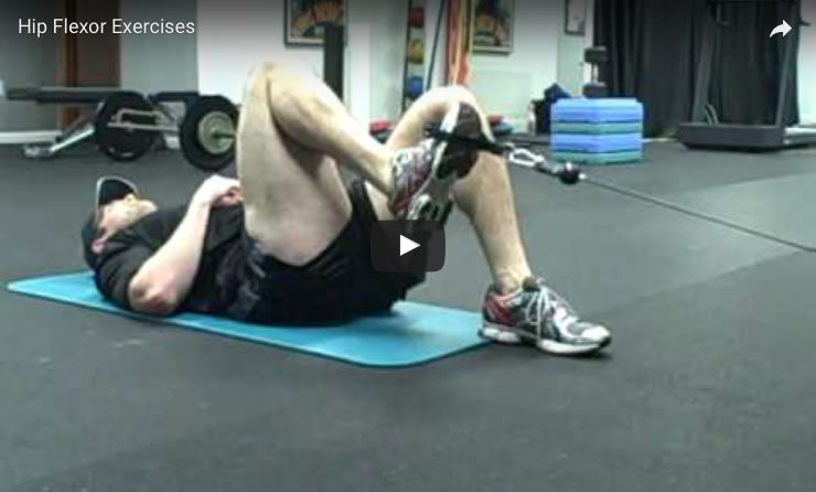 Flexion Muscle Actions Joint Movements