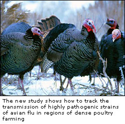 Latest Study about spread of Bird Flu