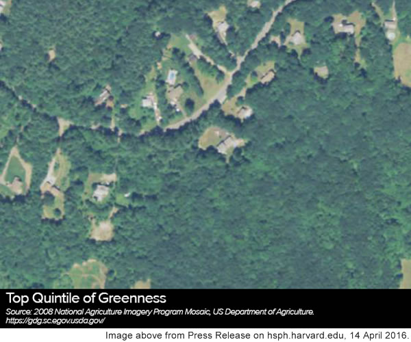 Top quintile of greenness