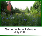Photo of the garden at Mount Vernon , Oxfordshire. Picture taken in July.
